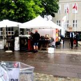 Sanse Festival 2014